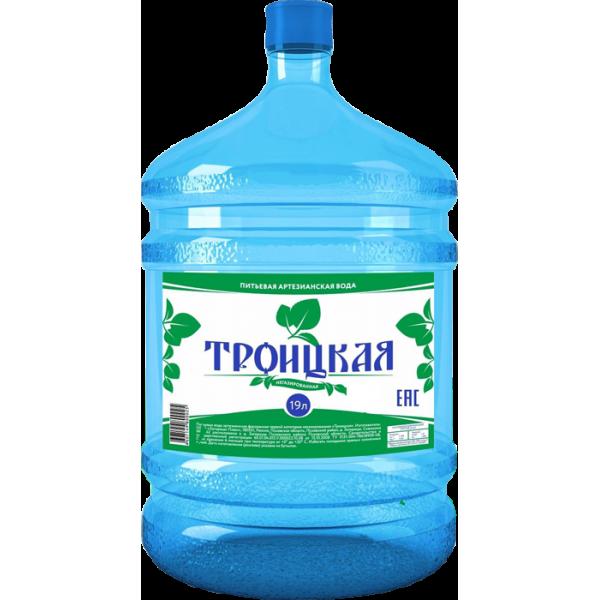 7b25a7dcd480b Питьевая вода Троицкая, 19 литров - купить в Пскове