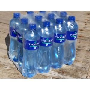 Вода Троицкая 0,6 л газ -упаковка 12 бут.