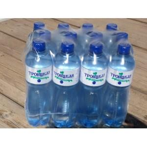 Вода Троицкая 0,6 л негаз - упаковка 12 бут.